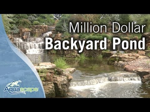 pond - Join Ed Beaulieu and Brian Helfrich of Aquascape Inc. as they tour a 2-year old water feature installed by Aquascape at a private residence in Crown Point, I...