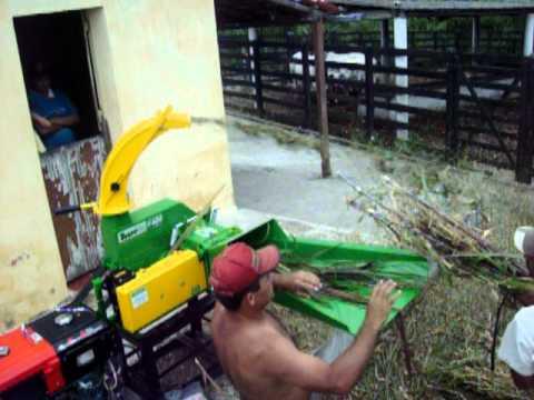 Ensiladeira Trapp com Motor Diesel Toyama - Casa do Agricultor- PB