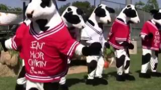 Chick-fil-A Dancing Cows