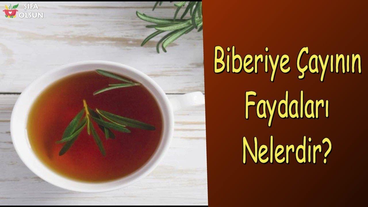 Biberiye Çayının Faydaları Nelerdir