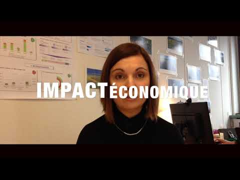 Video 2 WEBSERIE DES AR TRANSPORT ROUTIER DE PERSONNEL AVEC UNE EA