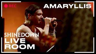 Shinedown - Amaryllis (Live)