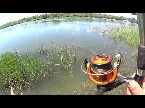 ловля рыбы китайской раколовкой