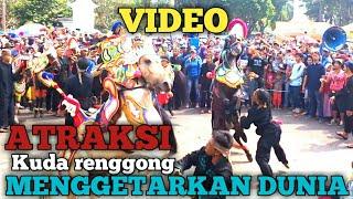 Video atraksi kuda renggong menggetarkan dunia - kuda renggong silat 2018