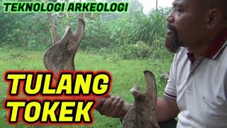 Video Pak Ndul - TULANG TOKEK MP3, 3GP, MP4, WEBM, AVI, FLV Mei 2019