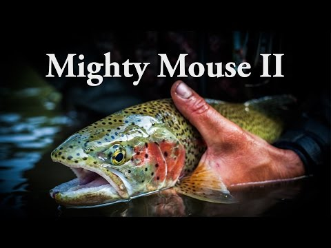 Alaska Mouse Fishing - Mighty Mouse II