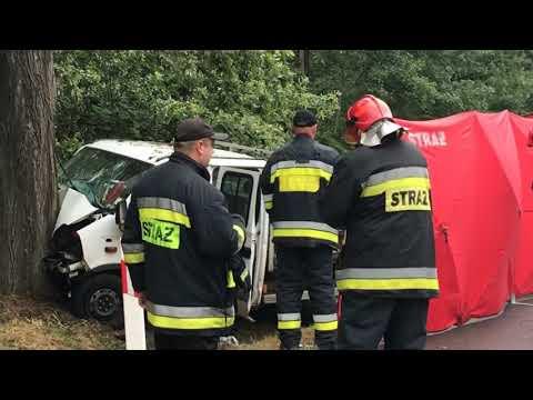 Wideo: Kierowca uderzył w drzewo. Nie żyje pasażer