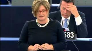 Felszólalás a párizsi terrortámadás plenáris vitájában