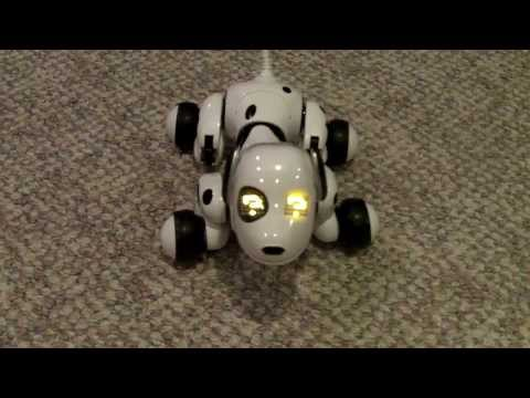 Zoomer L'animal de compagnie robotique interactif
