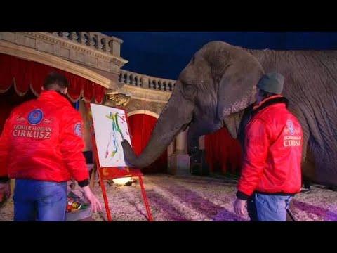 פיל מוכר ציורים במאות דולרים
