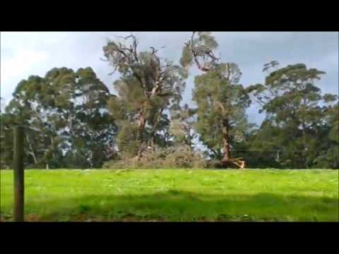 Western Australia - Part I