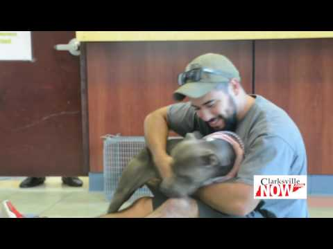 Fort Campbell Soldier Reunited With Lost Dog