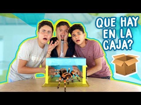 ¿QUE HAY EN LA CAJA? (ft. Fede y Mathi) |DosogasTeam Kids