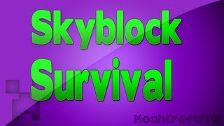 Skyblock w/Austin Part 2 - It's SO Small ( That's what she said )