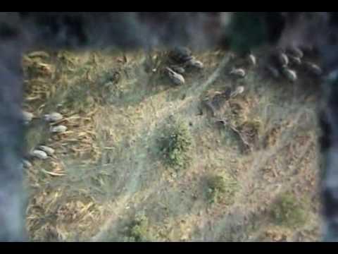 GOOGLE EARTH Mystery Secret UFO & Hidden Places PART 1