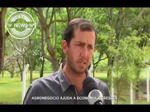 Record: Agronegócio ajuda a economia a crescer