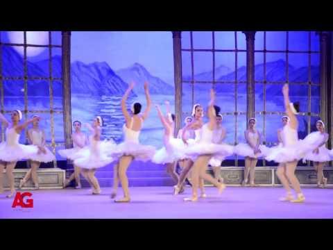العرب اليوم - شاهد: نيللي كريم أثناء أدائها لرقصة الباليه