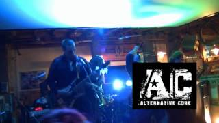Video Fuck Rules Fest Vol. 2   2014