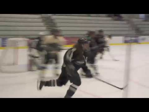 PSU Women's Ice Hockey vs. Stevenson