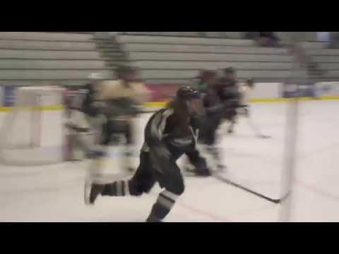 PSU Women's Ice Hockey vs. Stevenson