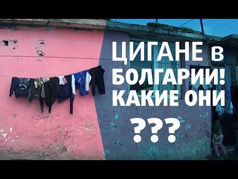 Цигане в Болгарии. Есть с ними проблемы или нет - DomaVideo.Ru