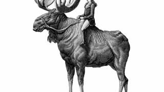 Scratchboard Illustration a Woman Riding a Bull Moose