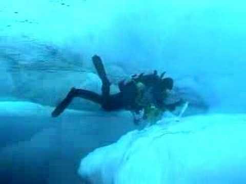 Buceo en el Artico