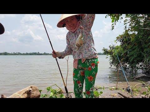 Chạy đua với con nước, cá lên liên tục. Hôm nay vợ xuất chiêu kéo cá | Săn bắt SÓC TRĂNG | - Thời lượng: 54:09.