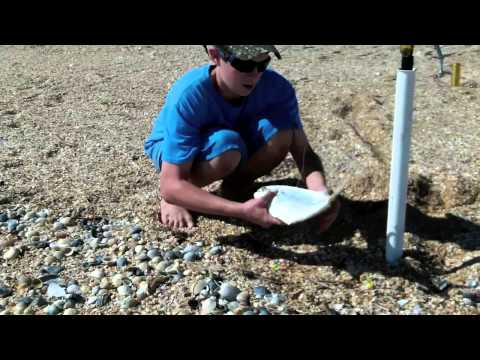 Fall Surf fishing for Pompano and Whiting – FL Nov 2012