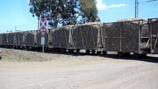 Sarina Australia  city pictures gallery : long sugar cane train... sarina mill.. qld australia