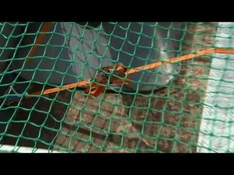 CONACORD Ladungssicherung: Netze und Planen