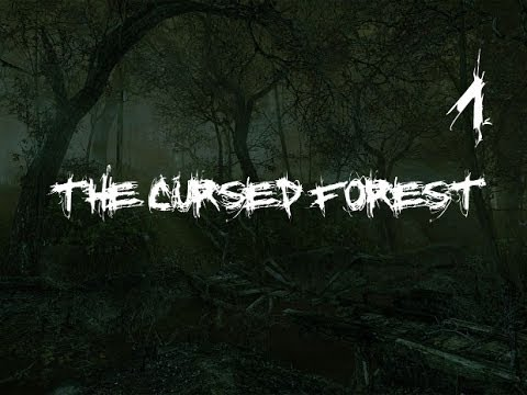 The Cursed Forest #1 [Лес полон чудес]