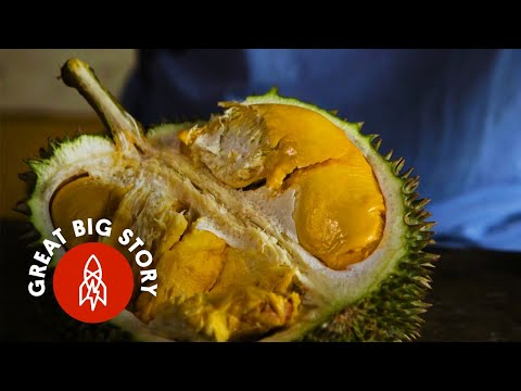 Smelly but Delicious Durian Fruit is a Must