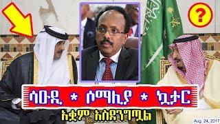 የአረቦች ዉዝግብ እና ሶማሊያ - Saudi * Qatar * Somalia - DW