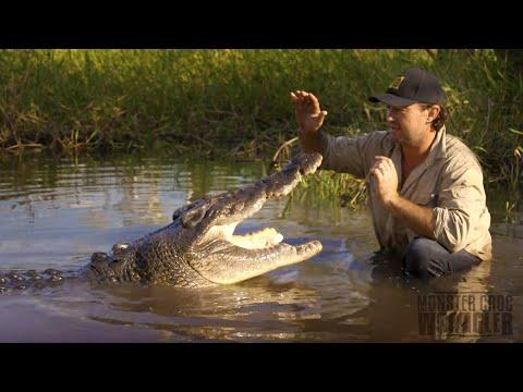 Matt SWIMS with a WILD CROCODILE!