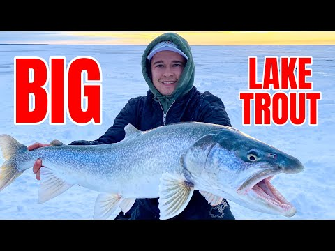 5 NIGHTS, 6 MASTERS!!! Ice Camping for Giant Lake Trout (Underwater Camera)