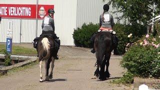 Leah en Joke rijden de Elfstedentocht te paard
