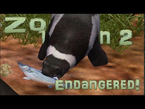 Quest Zoo! Fantastically Fertile Seal! - Episode #8