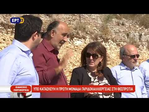 Μοχλός ανάπτυξης οι μονάδες ιχθυοκαλλιέργειας στη Θεσπρωτία | ΕΡΤ