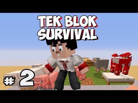 SEVİYE 3 ve ÇİFTLİK - Bölüm 2 - Tek Blok Survival (One Block)