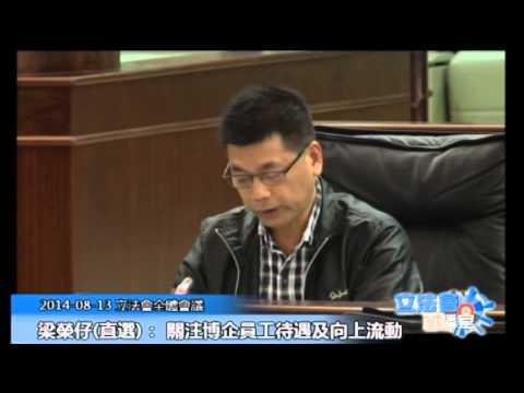 梁榮仔立法會全體會議  20140813