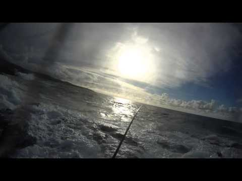 Hook-up and fight w/nice Ulua – Part 1