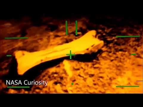 Mars (Planet) - NASA News: Mars Life Search Mission 2013 - JPL Curiosity video - PASADENA, California - Triceratops Bones Found - NASA's Mars rover Curiosity has relayed new...