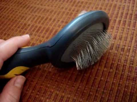 0 Cat Brush and Comb   What Are Your Favorite Cat Grooming Tools?