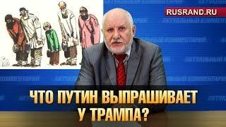 Что Путин выпрашивает у Трампа?