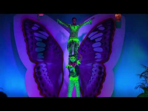 video JSAV Cirque