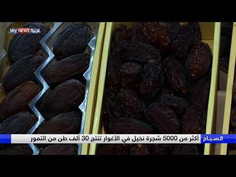العرب اليوم - بالفيديو: الأردن تسعى لإدراج النخلة