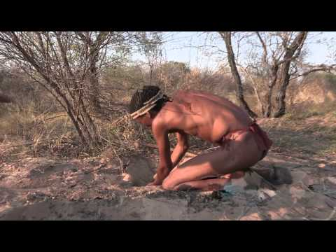 Bushman -once We Were Hunters