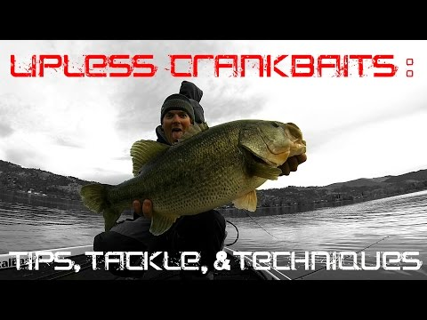 Lipless crankbaits tips tackle and techniques for fall for Pond fishing tips