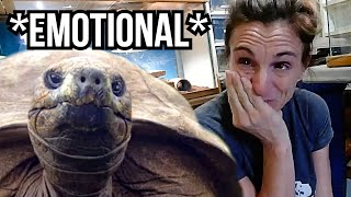 SHE CRIED WHEN WE GOT THIS NEW ANIMAL FOR THE REPTILE ZOO!! | BRIAN BARCZYK by Brian Barczyk